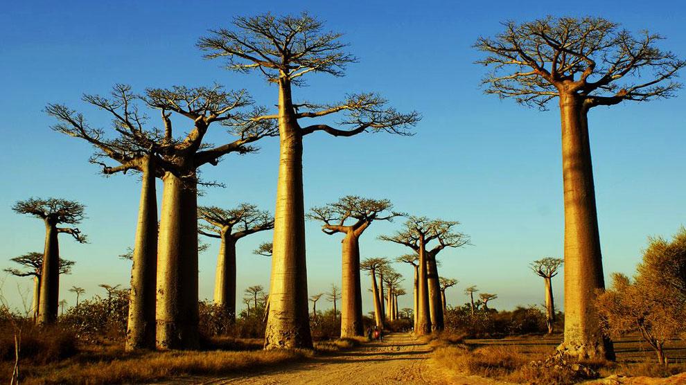lugares de África